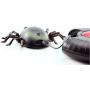 Жук-геркулес, ползающий по стенам (15 см, на пульте, USB-зарядка) - 866-1