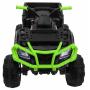 Детский квадроцикл Grizzly Next Green/Black 4WD с пультом управления 2.4G - BDM0909